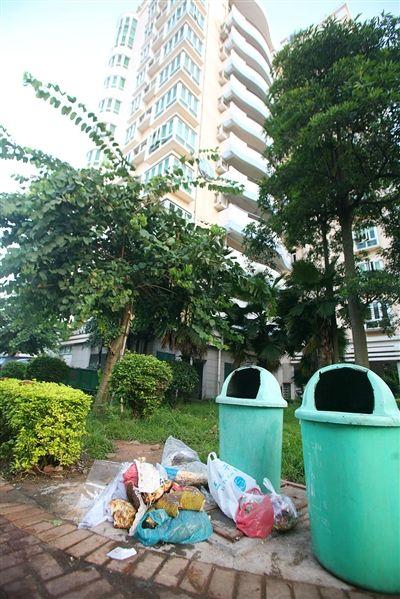 很多住宅小区只配备垃圾桶而无垃圾收集站