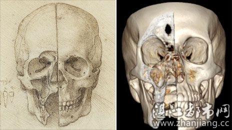 芬奇绘制的头骨素描图与数字成像技术获取的头骨图像对比-英国展出