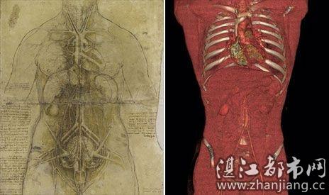 芬奇绘制的躯干素描图与数字成像技术获取的躯干图像对比-英国展出
