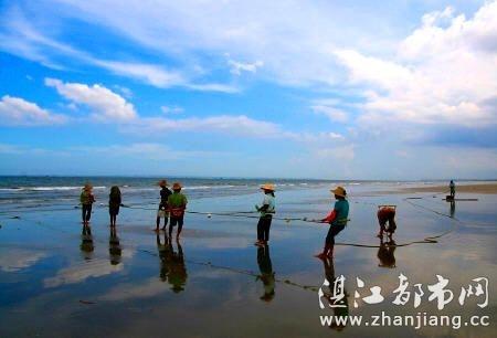 湛江水产学院(广东海洋大学前身)对海水养殖珍珠研究取得重大突破,有